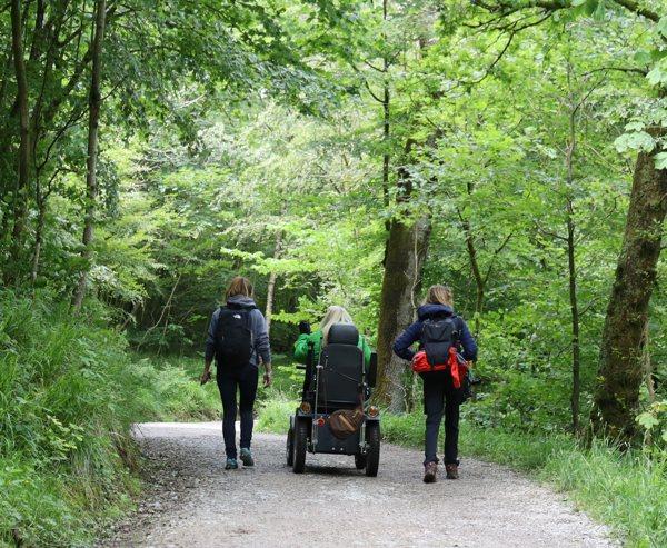 Three People Walking In The Woods